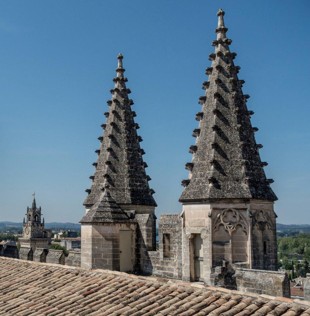 254 - Roof of the Palais des Papes, Avignon by bob65