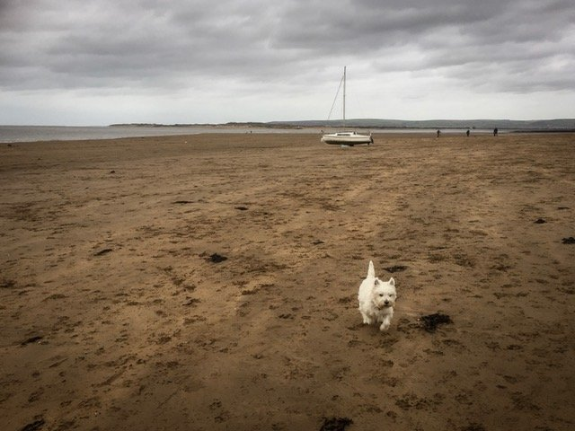 Waiting for Storm Brian by pamknowler