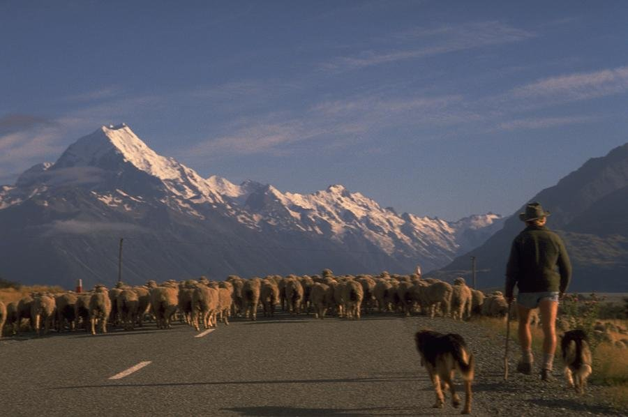 25 New Zealand Mt Cook by travel