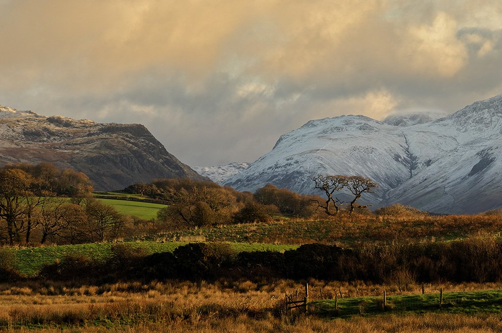 Whinrigg by ellida