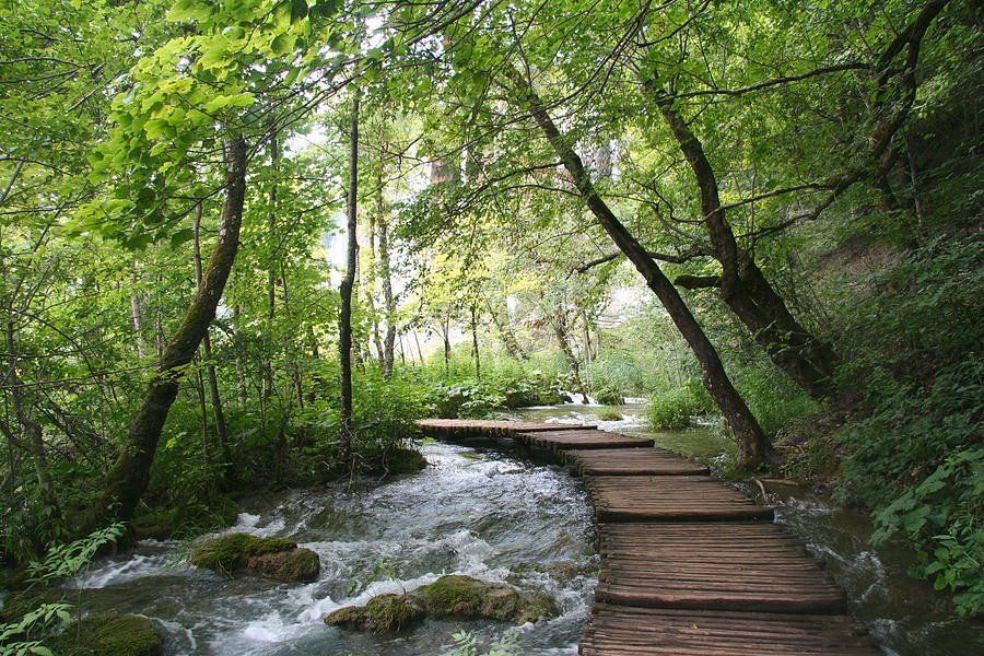 57 Plitvice Lakes National Park, Croatia by travel