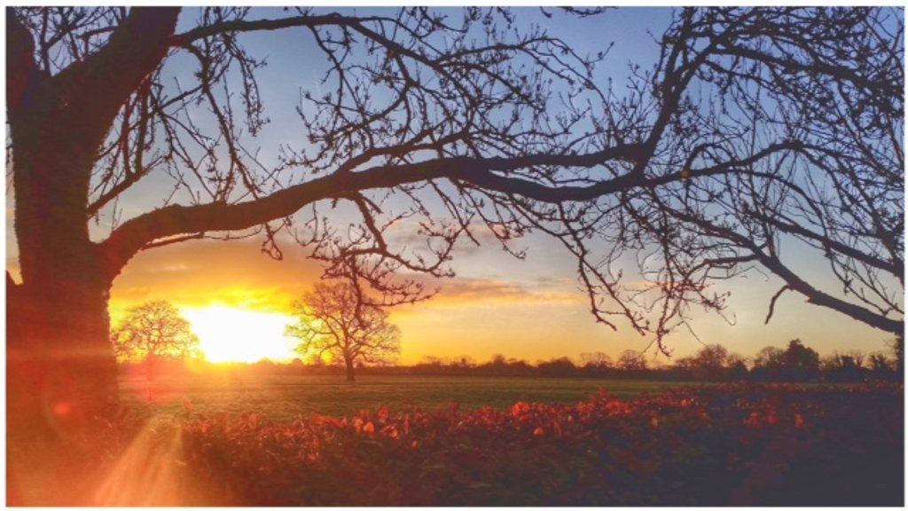 Lovely sunrise! by lyndamcg