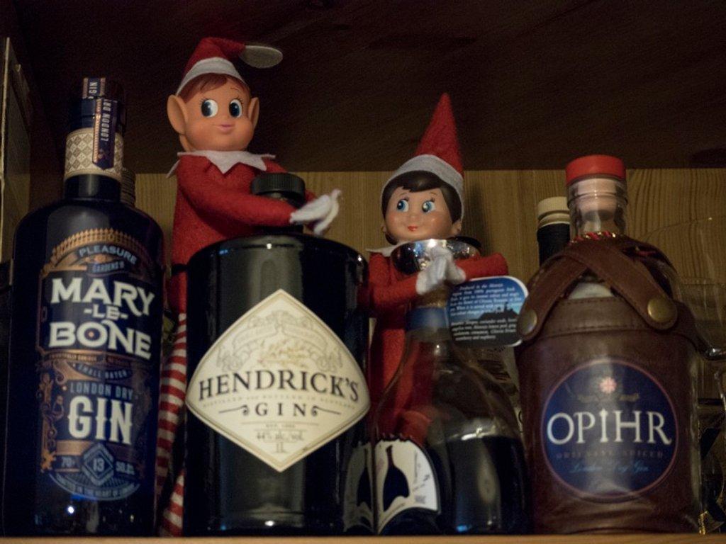 Mischievous Elf! - Found the Gin! by bizziebeeme