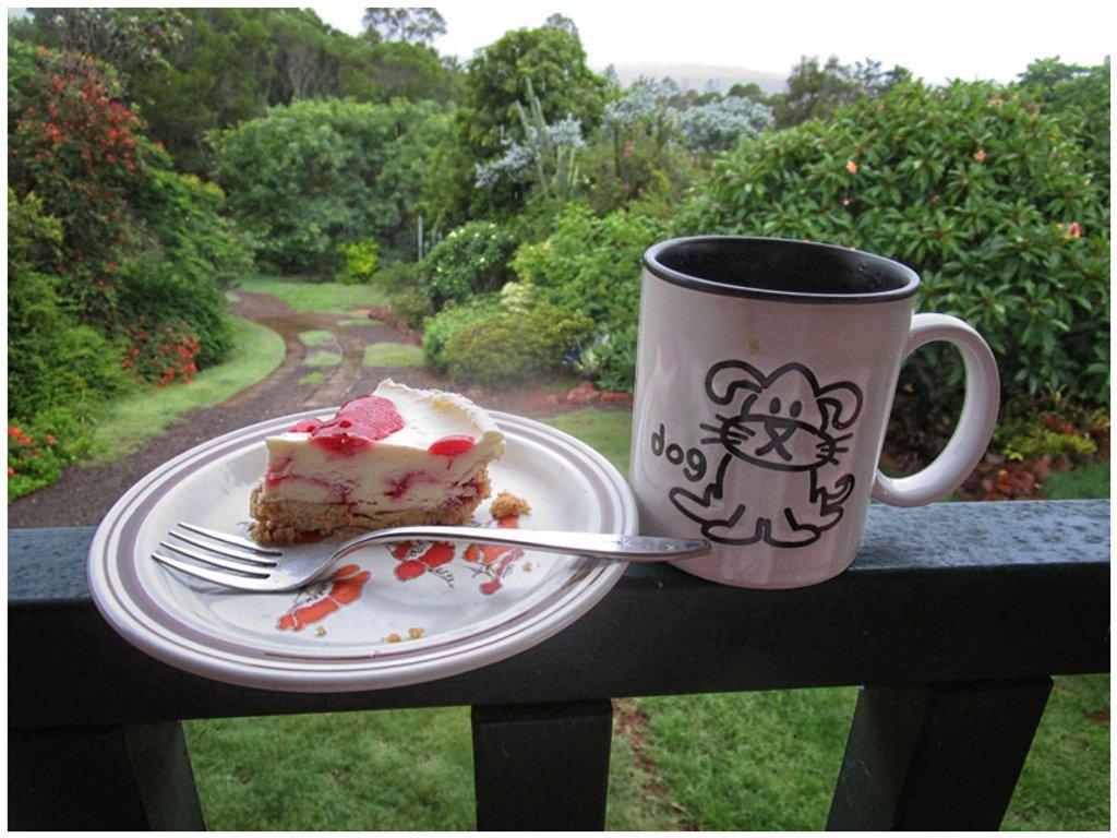 Tea & Cheese cake in the Summer rain by kerenmcsweeney