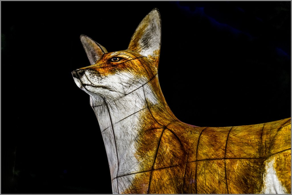 019 - Lumiere London - Fox at Leicester Square by bob65