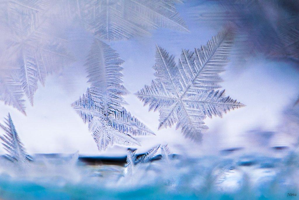 Frozen bubble 2 by novab