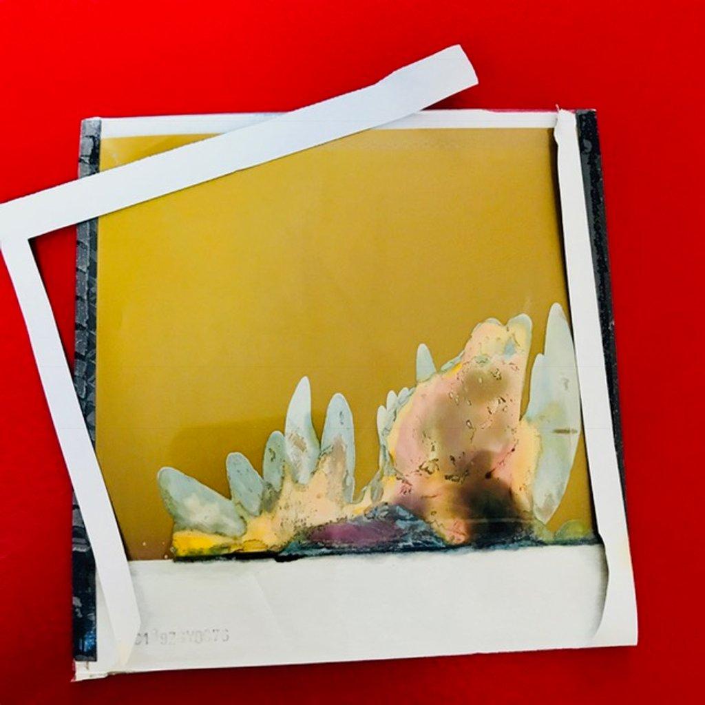 Expired film  by joemuli