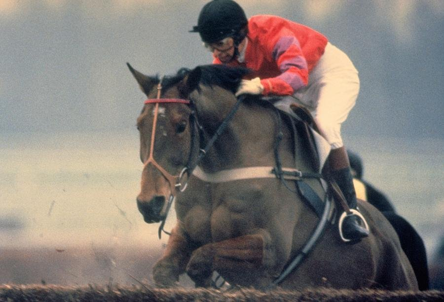 95 Princess Anne Riding Cnoc Na Cuille at Kempton Park by travel