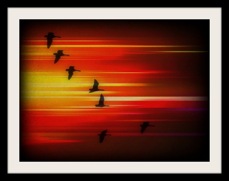 Riders In The Sky by moviegal1