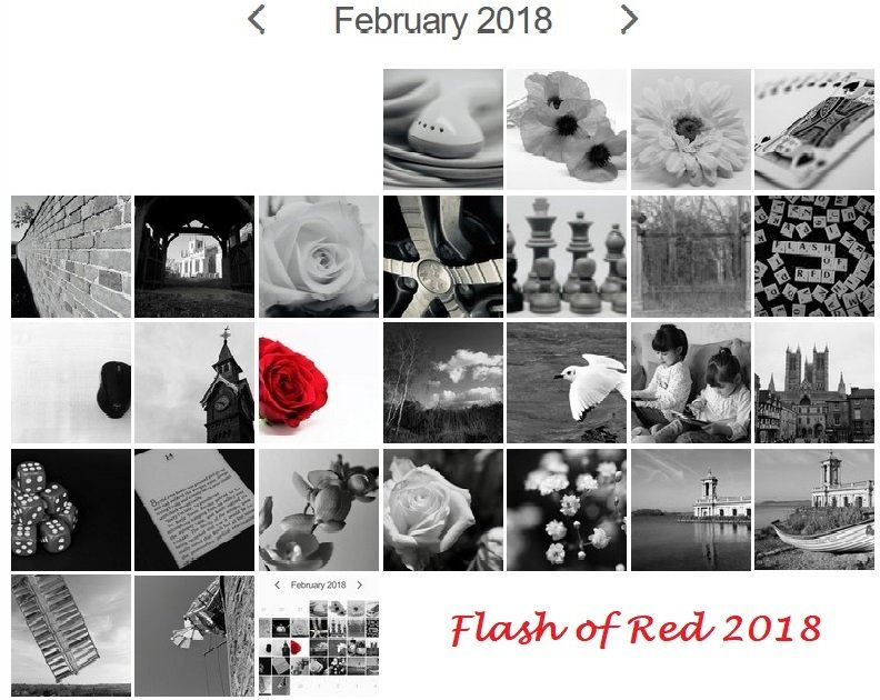Flash of Red 2018 by phil_sandford