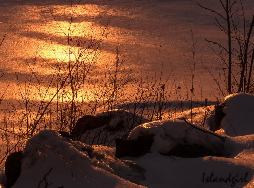Early Morning Glow by radiogirl