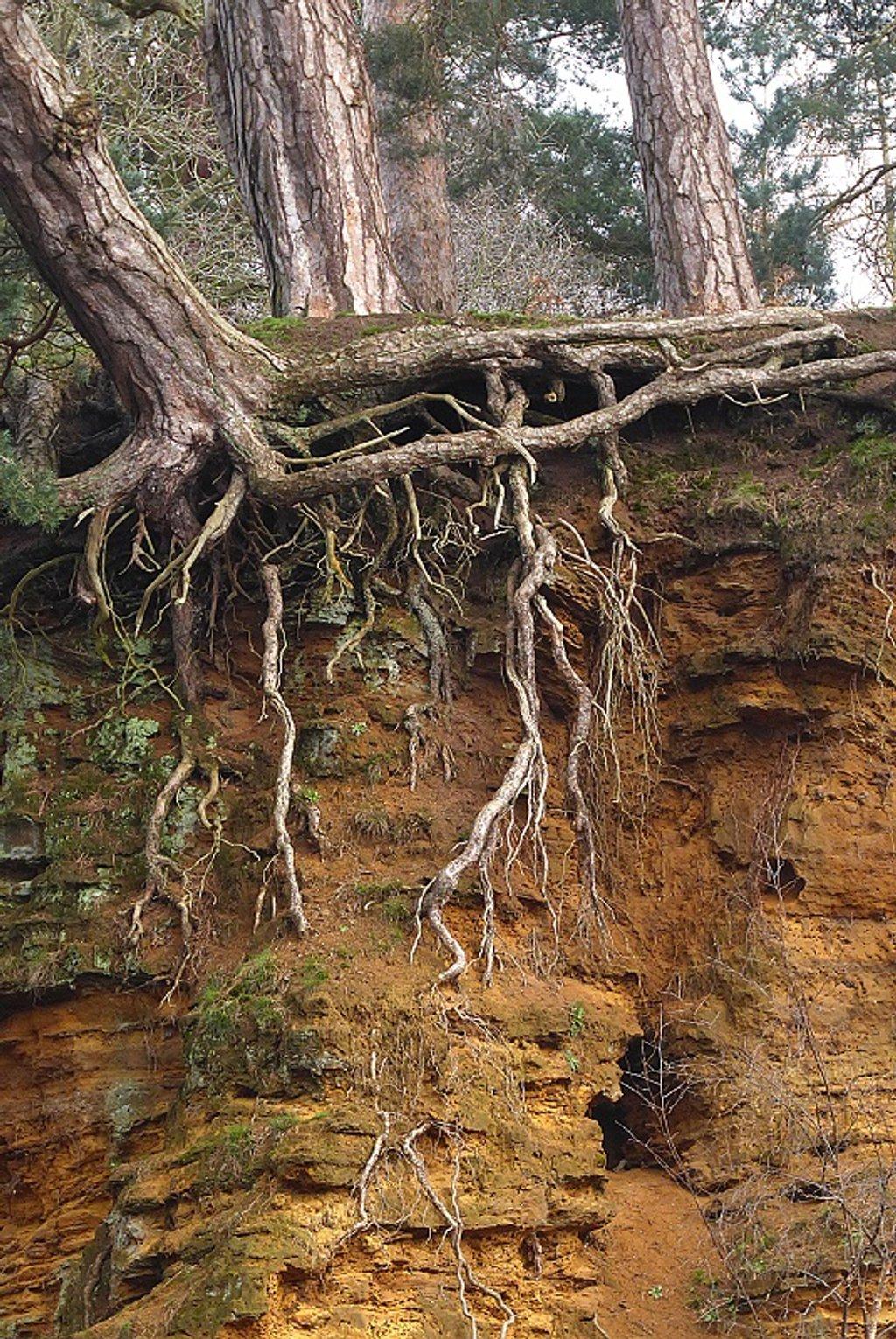 Erosion by helenhall