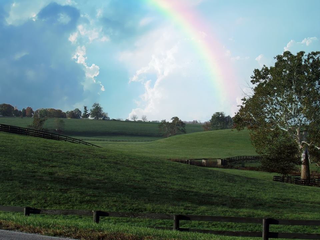 Kentucky Rainbow by randy23