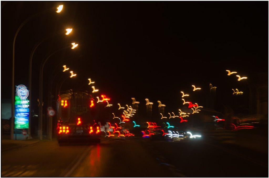 Night Flight by chikadnz