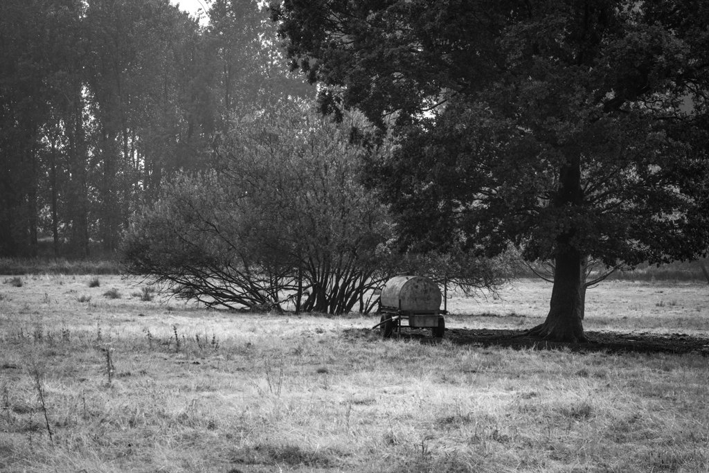 Watertank under Tree by leonbuys83