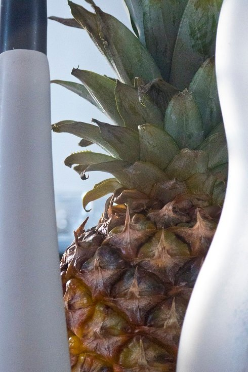 Obscurants with Pineapple by helenhall