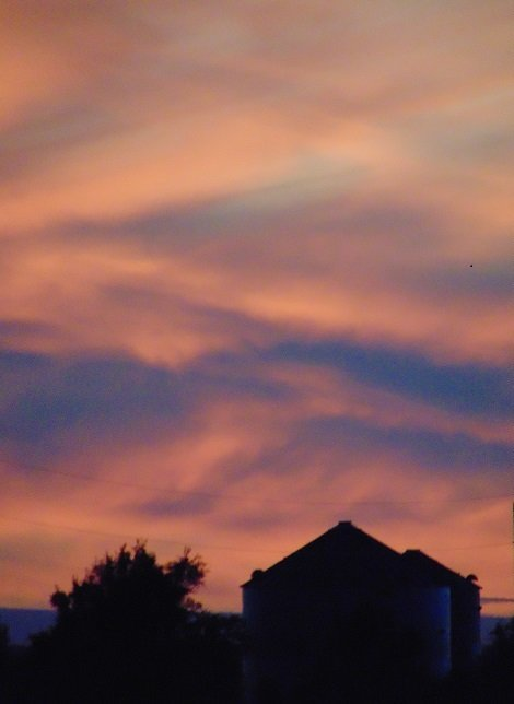 Cotton Candy Sky by dawnie