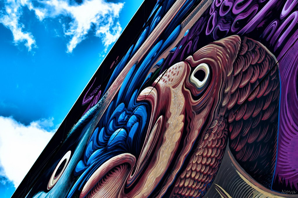 Street art by novab