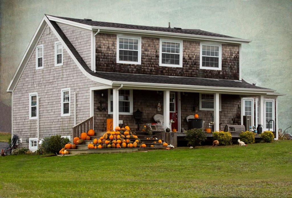Pumpkin display by pamknowler