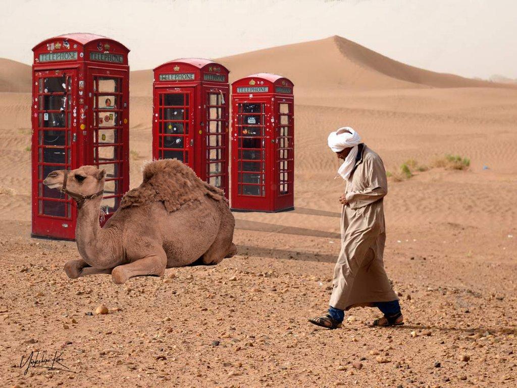 Desert on-line by yorkshirekiwi