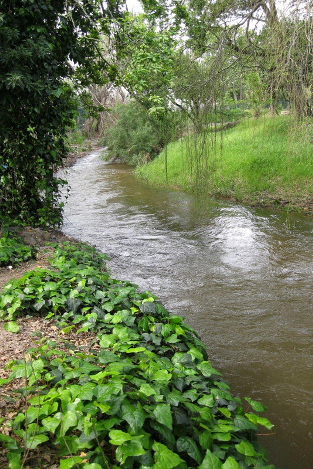 2018 10 01 Lourens River by kwiksilver