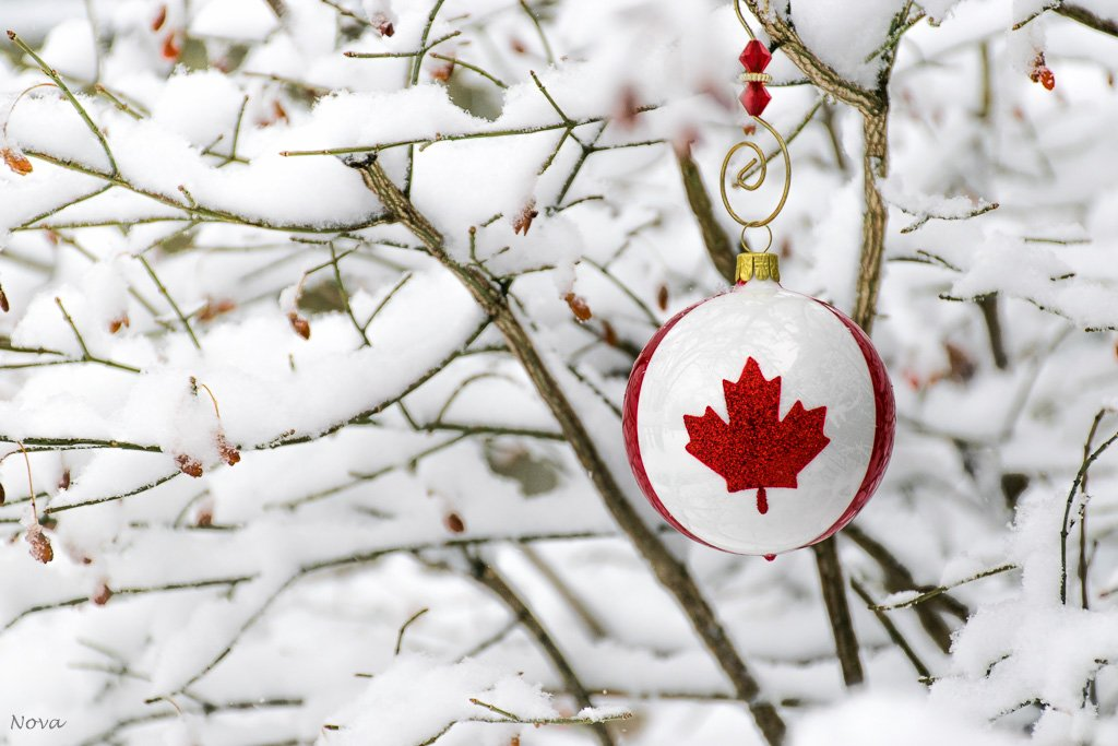 Canadian Christmas by novab