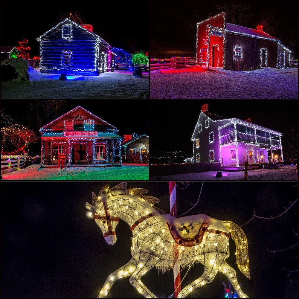 Alight At Night Collage by farmreporter