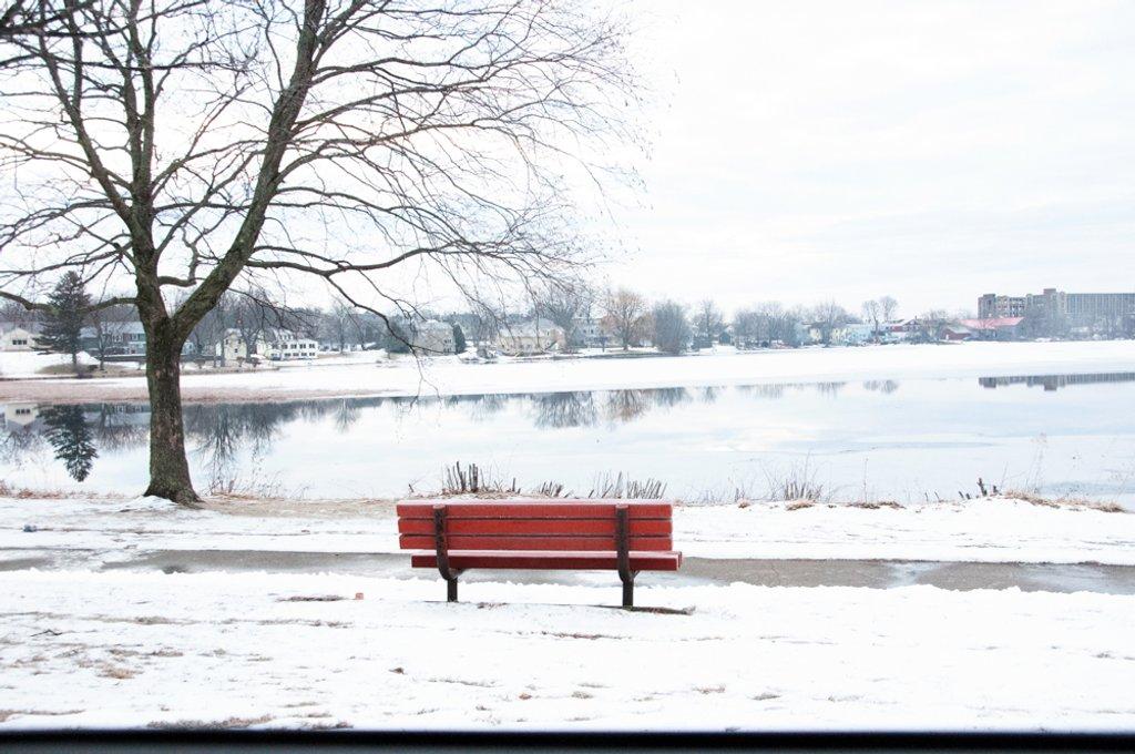 Waiting for spring by joansmor