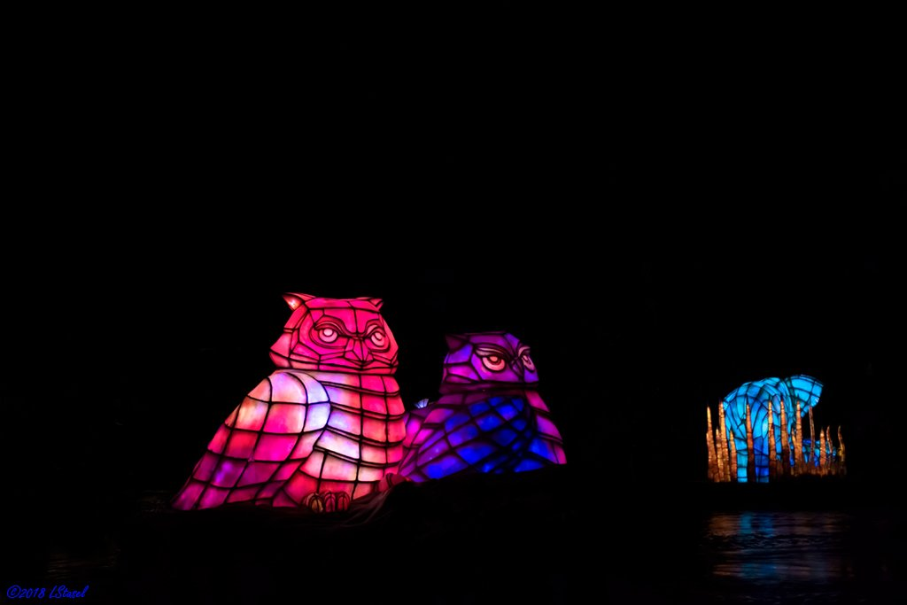 Rivers of Light by lstasel