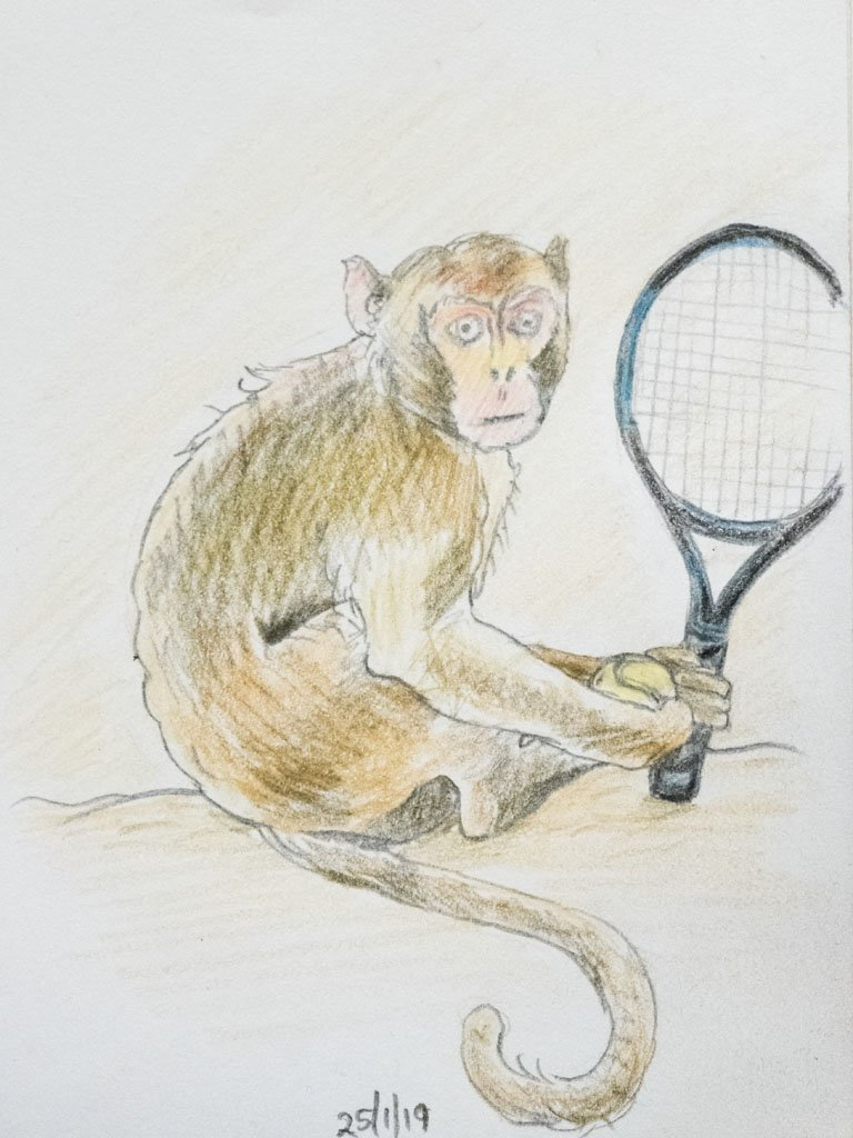 Monkey Tennis by harveyzone