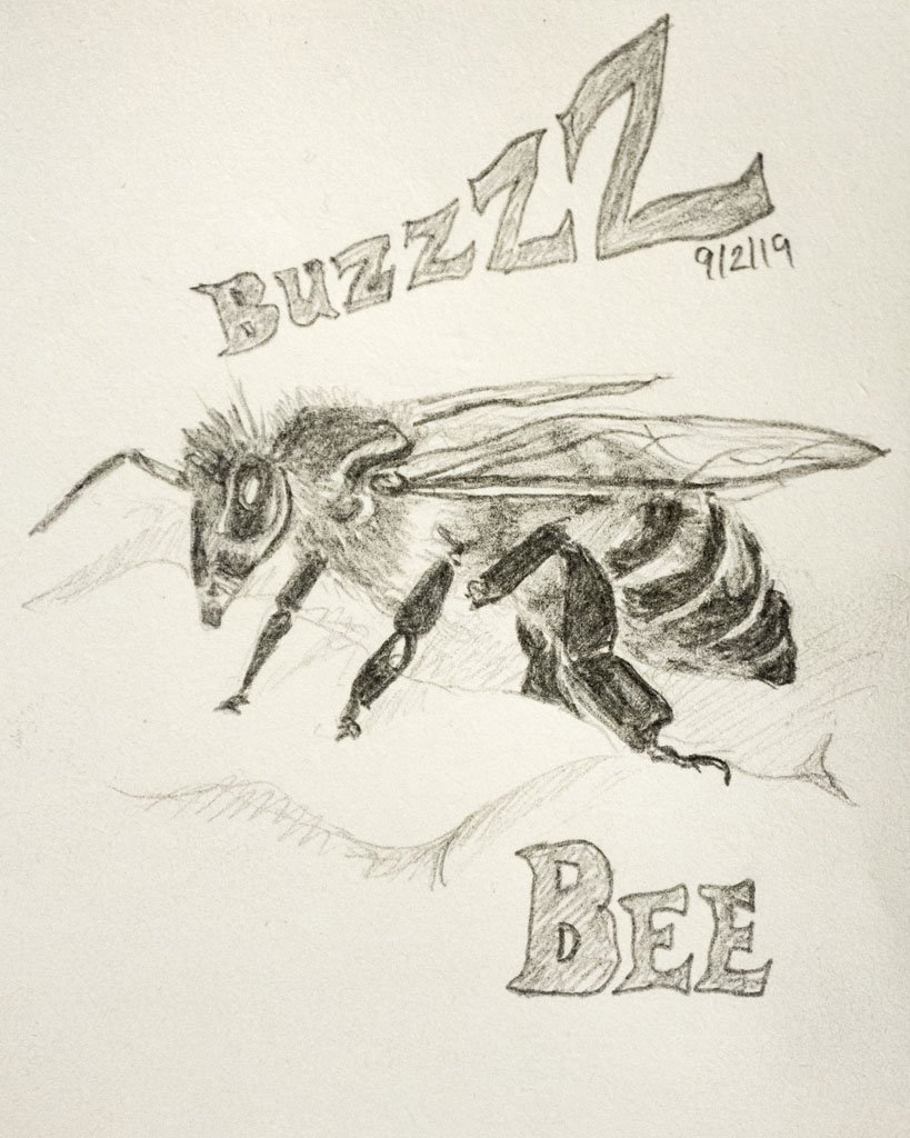 Buzz Bee by harveyzone