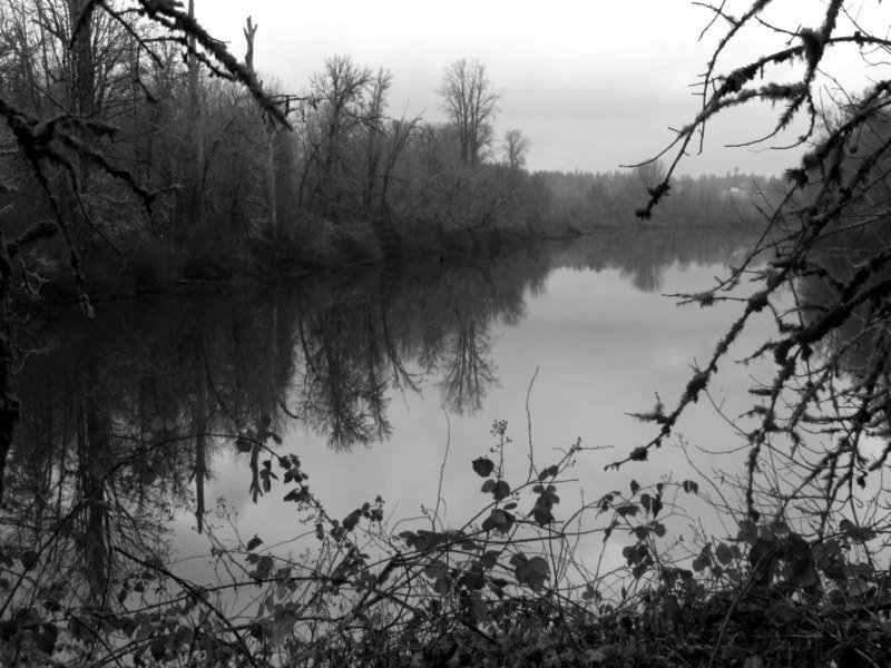 Oxbow Slough in B;W by granagringa