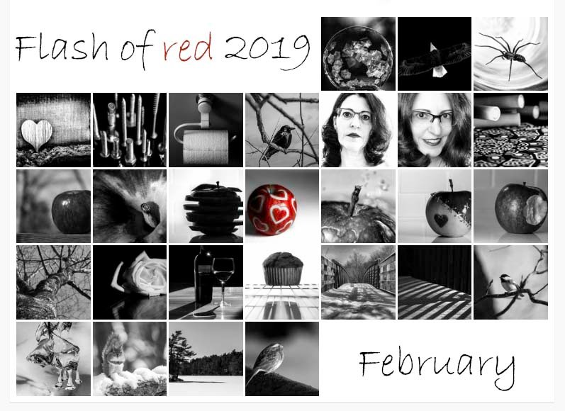 Flash of red 2019 by novab