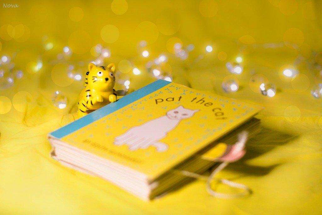 Books - day 13 by novab