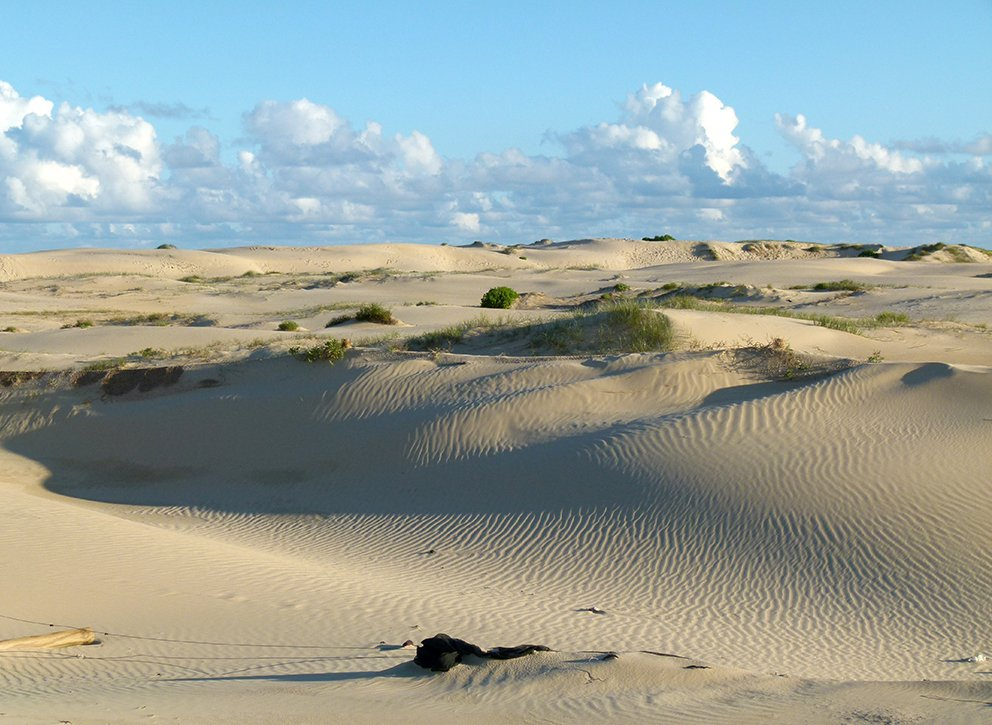 Dunes - Shadows and Light by onewing