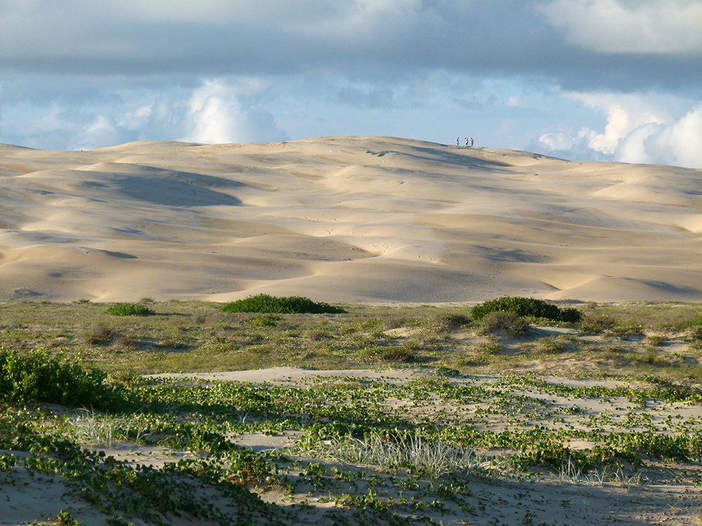 Dunes by onewing