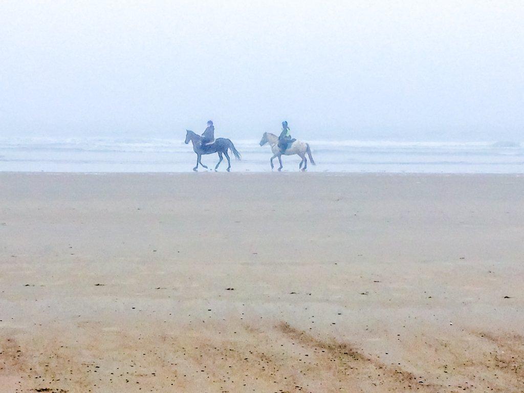 Walk on the Beach by joansmor
