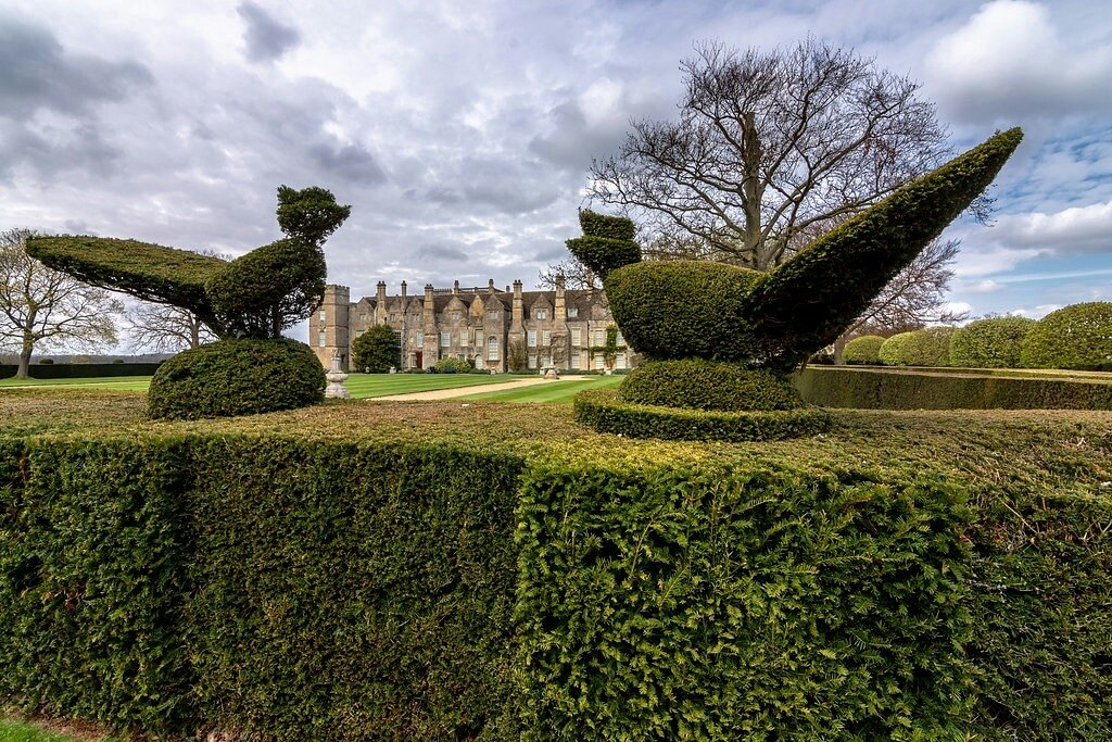 Peacock Topiary by rjb71