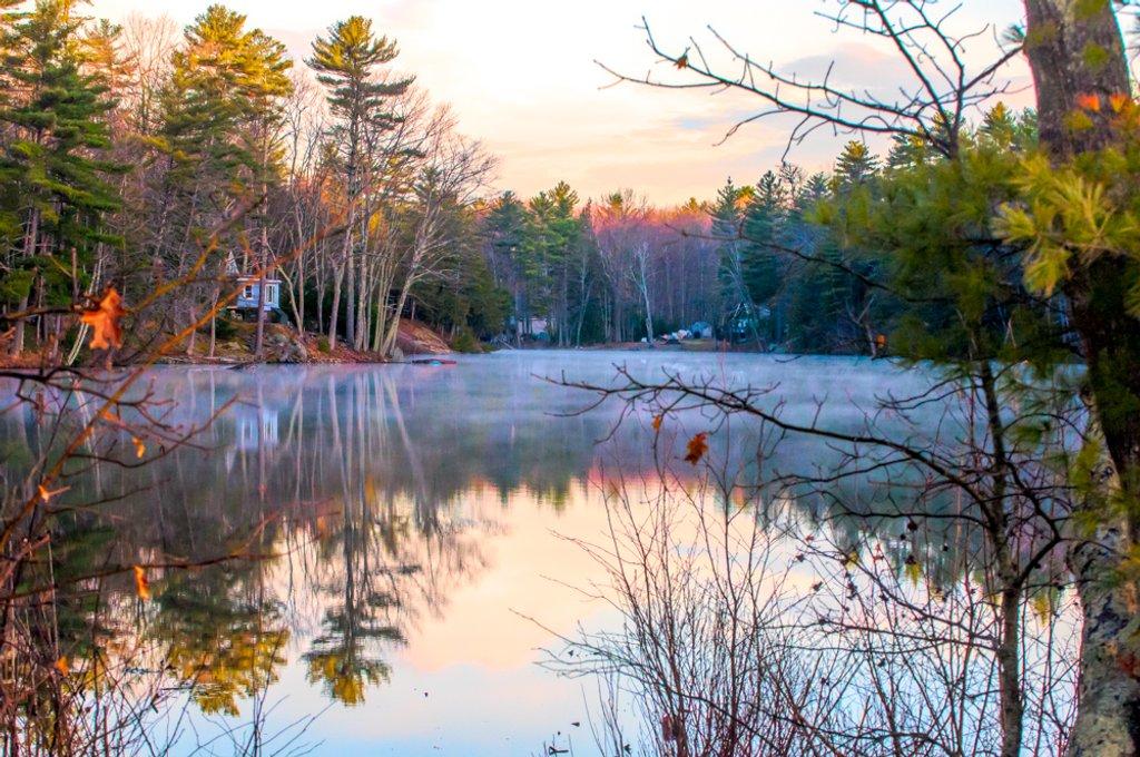 Mist on the lake by joansmor