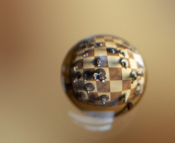 Ruy Lopez in a Water Droplet by tdaug80