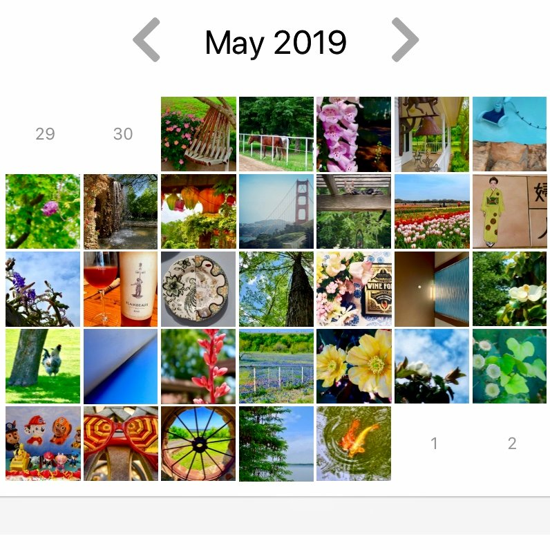 My Half and Half photos for May 2019 by louannwarren