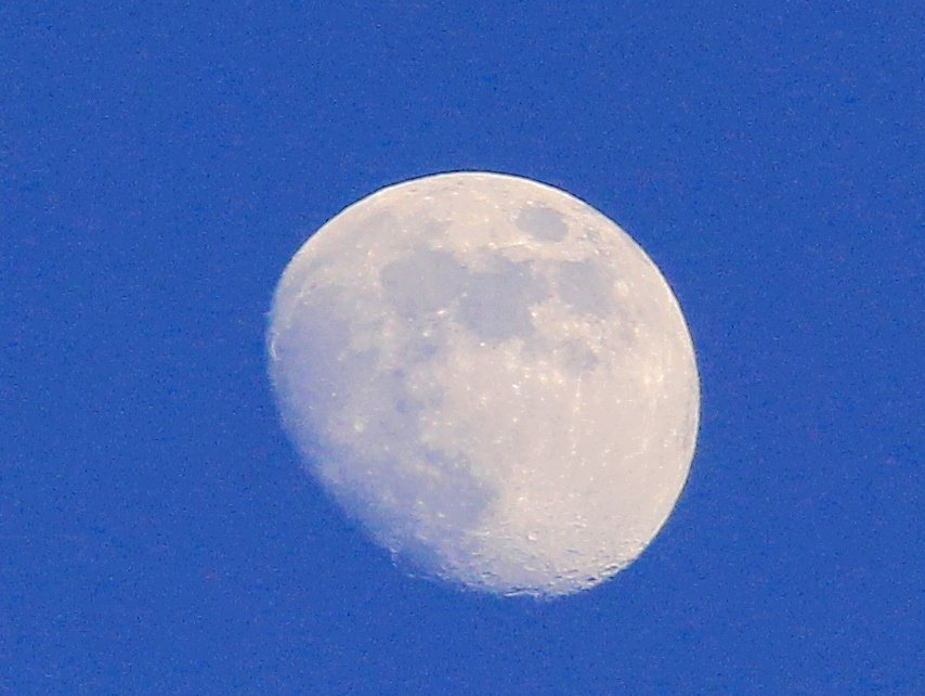 The Moon by digitalrn