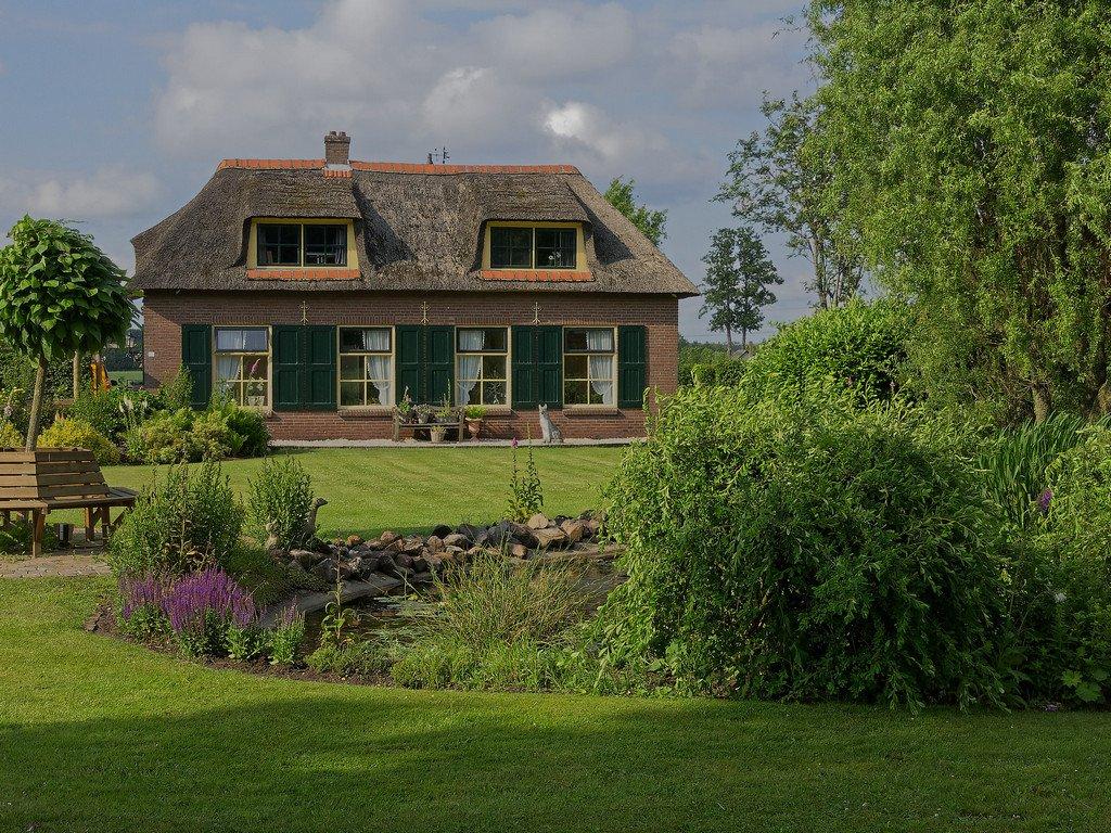 150 - Dutch Thatch, Dalfen by bob65