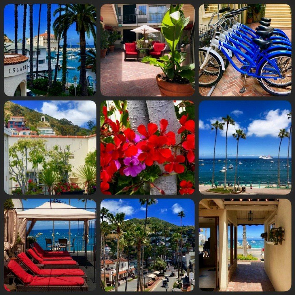 Hotel Villa Portofino by gardenfolk