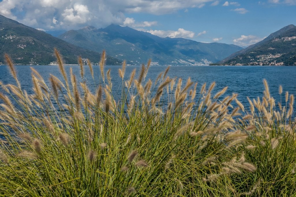 181 - Lake Maggiore from Stresa by bob65