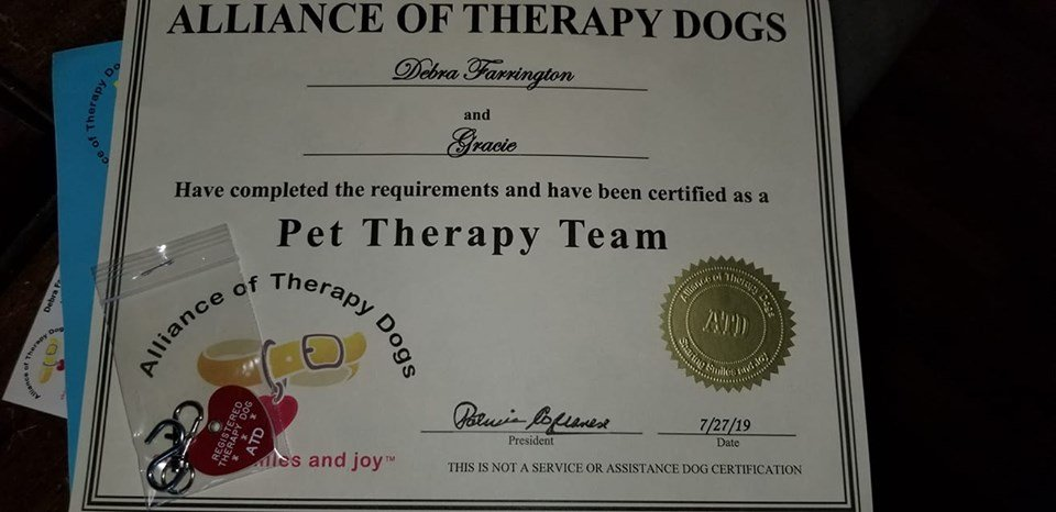 Pet Therapy Certification by dfarrington