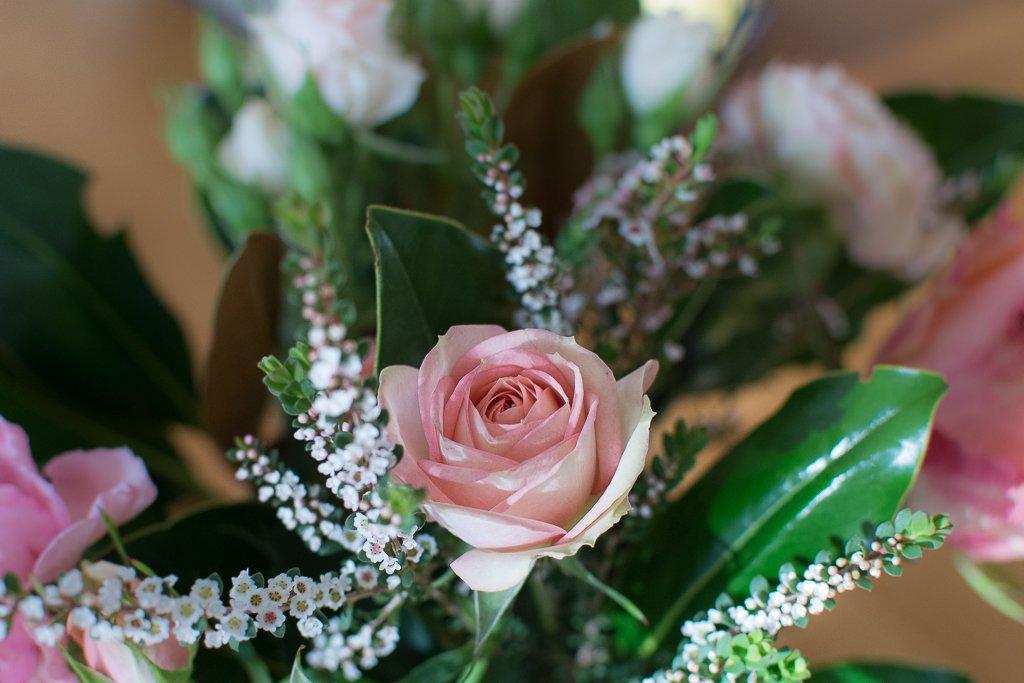 rose by peta_m