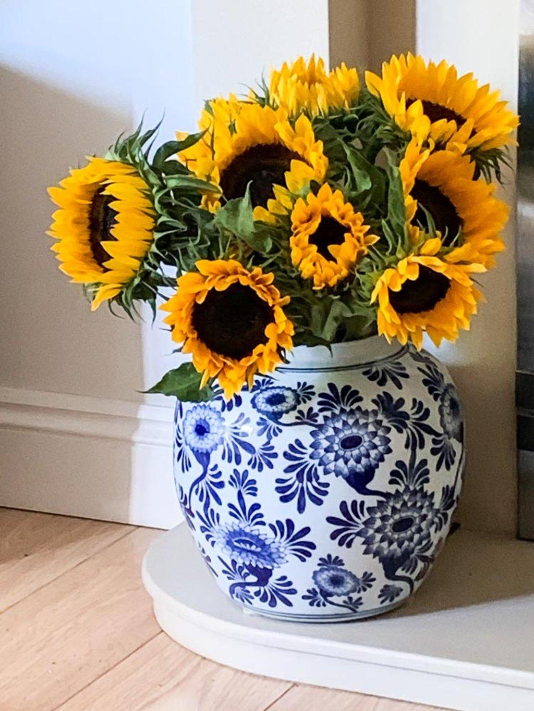Sunflower treat by pamknowler