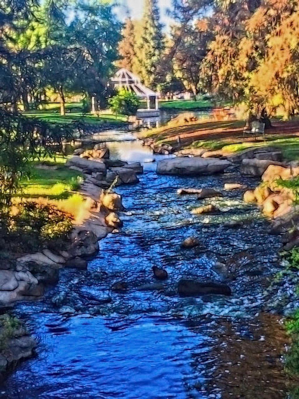 A Walk Through The Park by joysfocus