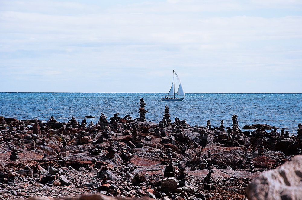 Cairns watch the boat sail by by joansmor